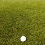 芝目とは 芝の種類と芝目の読み方