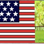 アメリカゴルフ